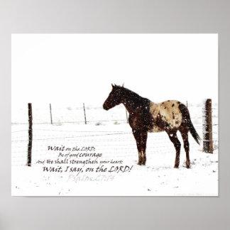 Poster del caballo del invierno y del mate de la e
