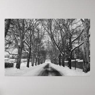 Poster del camino del invierno