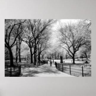 Poster del Central Park