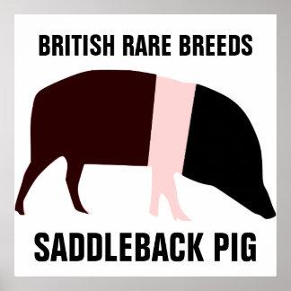 Poster del cerdo de la ensillada