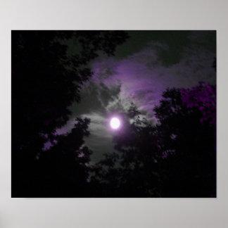 Poster del cielo nocturno póster