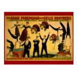 Poster del circo de la compañía de Livingstone Tarjetas Postales