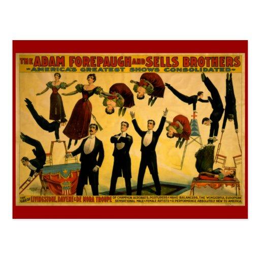 Poster del circo de la compañía de Livingstone Tarjeta Postal