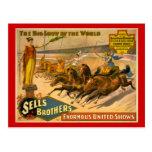 Poster del circo de las razas de carro de los herm tarjeta postal