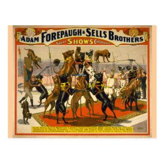 Poster del circo de los grandes daneses/de los per tarjeta postal