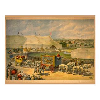 Poster del circo del desfile de los caballos tarjetas postales