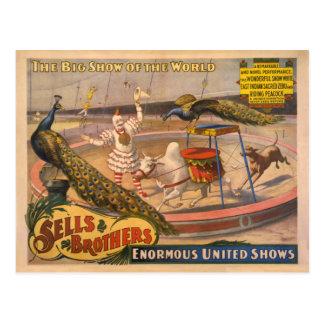 Poster del circo del payaso, del cebú y del pavo postales