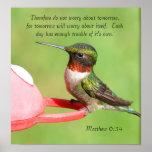 Poster del colibrí