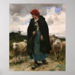 "Poster del collie del ~Border ""del Shepherdess """