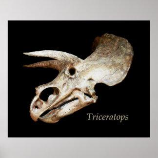 Poster del cráneo del Triceratops