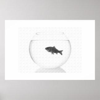 Poster del cuenco de los pescados