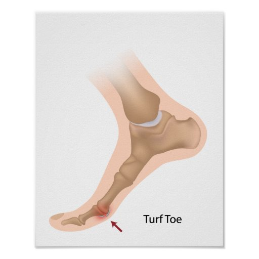 Poster del dedo del pie del césped