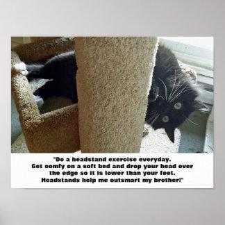 Poster del ejercicio del Headstand del gato negro