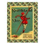 Poster del esquí del vintage, esquís de la tierra postal