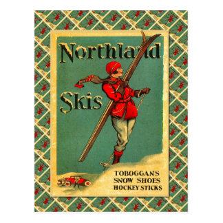 Poster del esquí del vintage, esquís de la tierra tarjeta postal