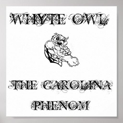 Poster del fenómeno de Carolina del búho de Whyte