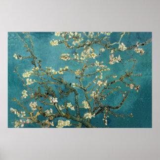 Poster del flor de la almendra