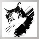 Poster del gato