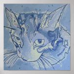 Poster del gato azul