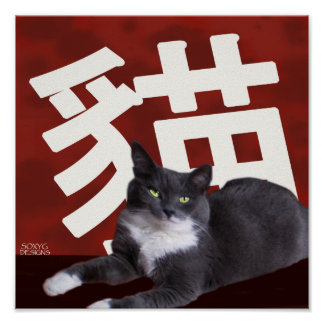 Poster del gato de la apariencia vintage