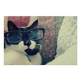 poster del gato del inconformista