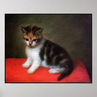 Poster del gato: Pintura del gatito de George Stub