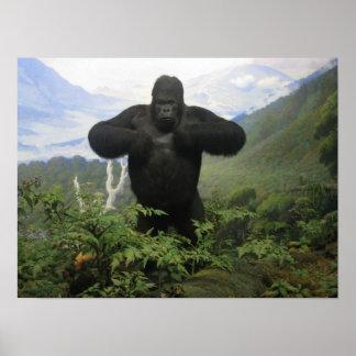 Poster del gorila