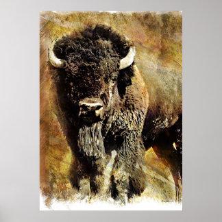 Poster del Grunge del búfalo Póster