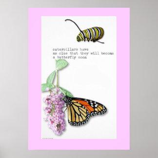 Poster del Haiku de la mariposa Póster