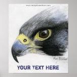 Poster del halcón de peregrino