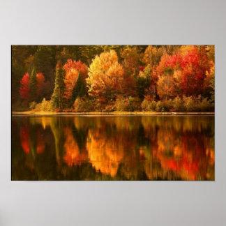 Poster del lago autumn