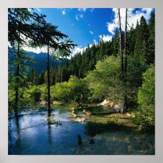 Poster del lago forest de la montaña