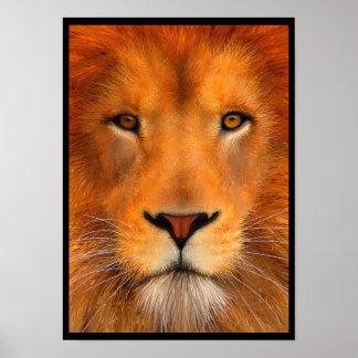 Poster del león de Simha Póster