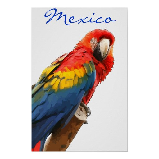 Poster del Macaw del escarlata de México