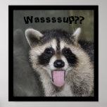 Poster del mapache - #1038