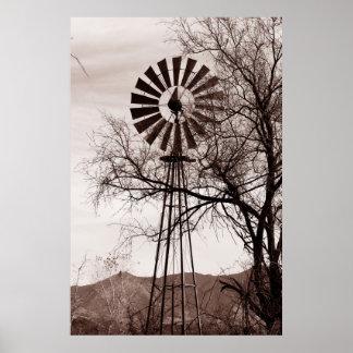 Poster del molino de viento de Arizona Póster