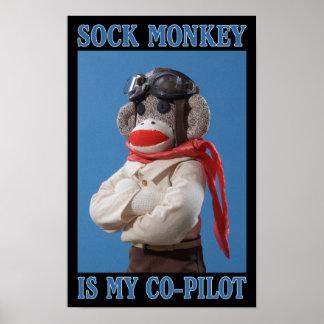 Poster del mono del copiloto póster