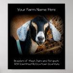 Poster del negocio del criador de la cabra