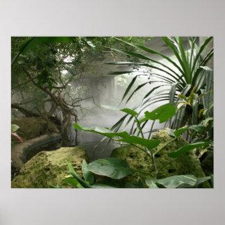 Poster del objeto expuesto de la selva tropical de