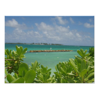 Poster del océano de Bahamas Póster