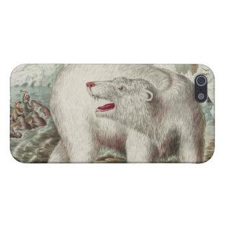 Poster del oso polar iPhone 5 fundas