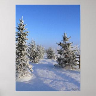 Poster del país de las maravillas del invierno