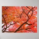 Poster del paisaje de la impresión de los árboles