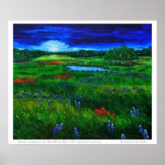 Poster del paisaje de Tejas