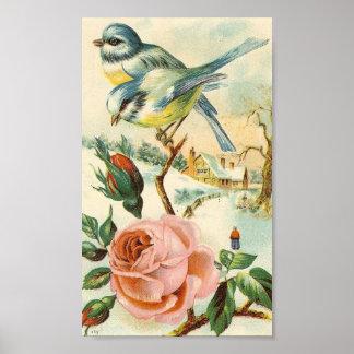 Poster del pájaro del vintage