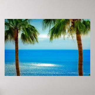 Poster del paraíso de la palmera