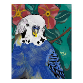 Poster del Parakeet
