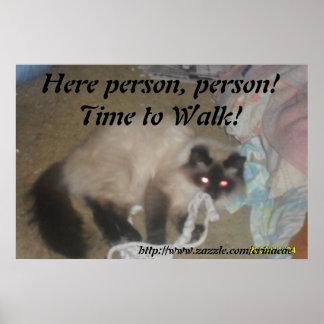 Poster del paseo de gato