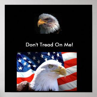 Poster del patriota