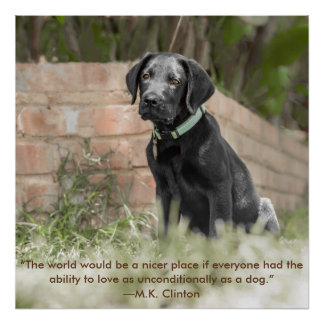 Poster del perrito de Labrador con cita inspirada